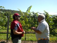 Brandon and Dave Page talk vine and grape care.